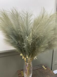 Beautiful Extra Large Fluffy Faux Pampas - Olive
