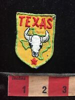 Vtg Green Border Version Souvenir TEXAS COW SKULL HEAD Jacket Patch 75X4