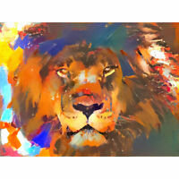 Wild Lion Colourful Abstract Large Canvas Wall Art Print