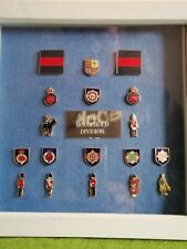 More details for gaurds division military pin badge display case