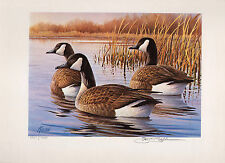 Pennsylvania #2 1984 State Duck Stamp Print Canada Geese by James Killen