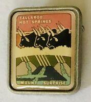 Tallaroo Hot Springs Mount Sunrise Souvenir Pin Badge Vintage Bull Cow (F10)