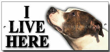 "STAFFORDSHIRE BULL TERRIER ""I LIVE HERE"" METAL SIGN,DOG BREEDS,SECURITY,WARNING."