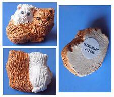 Animali famiglia gatto gatta marrone gattino mamma cucciolo miniatura Peru