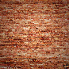10X10FT Brick wall Vinyl backdrop Photography Prop Photo Studio Background HB21
