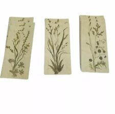 Blank Nature Note Cards Rectangle 8 Stationery Set Paper Wheat Print Rossler