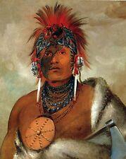 George Catlin's Indian Gallery: Wa-hon-ga-shee, 'No Fool' - Fine Art Print