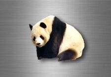 Aufkleber sticker wandtattoo biker tiere motorrad animal tattoo panda pandabär