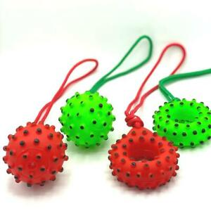 Pet Dog Squeaky Vinyl Toy Dotty Ball Donut On Rope Set for Durable Clean Teeth