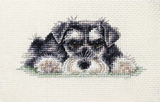 MINIATURE SCHNAUZER ~ Puppy, Dog, Full counted cross stitch kit + all materials