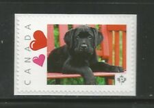 PICTURE POSTAGE    P   Hearts frame    2588a  PERSONALIZED     MNH   #2