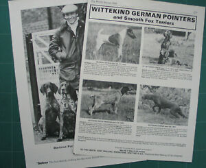 GERMAN SHORTHAIRED POINTER DOG KENNEL CLIPPINGS all from 1970s-2010s  x 35