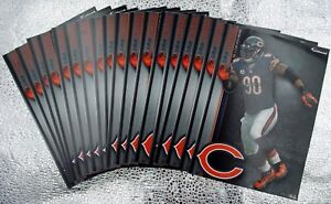 18 Fathead Julius Peppers Chicago Bears NFL Decal Team Logo 5X7 Tradables