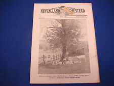 New England Homestead Newspaper Magazine,June 1,1940,McIntos,Coccidiosis