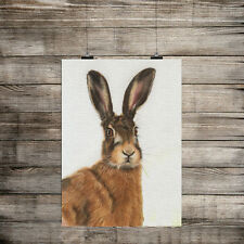 ANIMAL PRINT STARTLED HARE CANVAS EFFECT PRINT WALL ART FOR THE HOME,