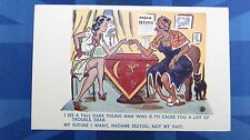 Risque Comic Postcard 1930s Nylons Stockings FORTUNE TELLER Black Cat FUN FAIR