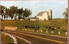 Vintage Postcard Greeting From Cokato, Minnesota S101134 Grazing In Contentment