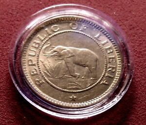 TWO 2 BU 1937 African Elephant Palm Tree 1/2 Cent US Mint 18mm Gem Coins w Holdr