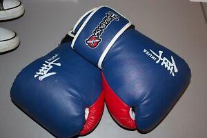 Hayabusa Ikusa boxing gloves 16oz