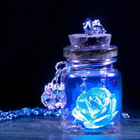 Fluorescent Pendant Jewelry Vintage Wishing Bottle Glowing Flower Necklace