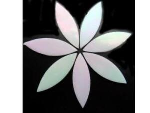 Large Iridised White Stained Glass Petals - Mosaic Tiles Supplies Art Craft