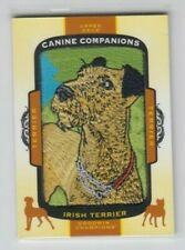 2018 Upper Deck Goodwin Champions Canine Companions Tier 1 Irish Terrier #Cc116