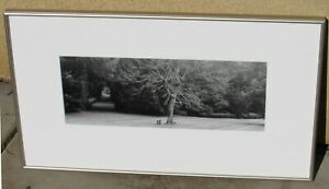 LYLE GOMES S/N Silver Gelatin Photo The Long Walk Rousham Park England