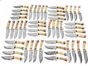KIF 6 in. Lot of 50 Custom Handmade Damascus Steel Hunting Knife Stag Handle