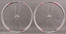 Weinmann DP18 Silver fixed gear Track Bike SingleSpeed Wheelset 700c DT spokes