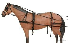Horse Driving Harness - Samson Deluxe - Cob/Small Horse - Black Nylon