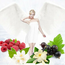 ANGELS TEMPTATION  5ml PERFUME OIL WHITE CHOCOLATE, JASMINE, BLACKCURRENT