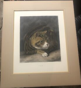 """King Ambler Hand Colored Collotype after Abraham Cooper's """"Tom"""" the Tabby Cat"""