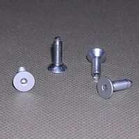 4 Side Panel Screws (uses a T10 Torx Screwdriver) from Tower Apple Power Mac G4
