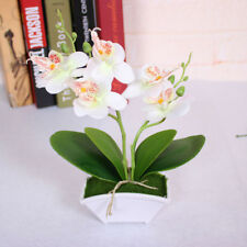 Artificial flower + vas Butterfly Orchid Flower Real Touch leaves Plants Floral