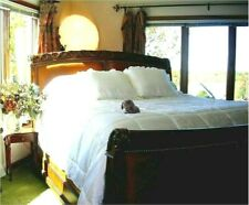 Soft Surroundings 100% Silk (Inside and Out) Comforter Ivory King Orig $549