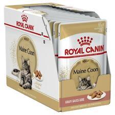 Royal Canin Maine Coon Rasse Gavy Nass Katzenfutter Erwachsene 1-12 Jahre, 12x