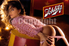 Fridge Magnet Sexy Schlitz doggy style blonde playmate babe pin-up girl art
