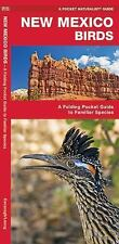 New Mexico Birds: A Folding Pocket Guide to Familiar Species: By Kavanagh, James
