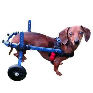 Dachshund Wheelchair - for Small Dogs 2-30+ Pounds - Veterinarian Approved