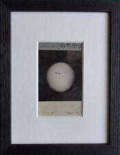 Rare CDV of the Sun 1907 - Antique Photo by Conrad Stapelfeld