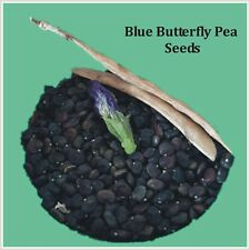 Blue Butterfly Pea Flower Seeds,Blue Magic Water for plant,50 Seeds