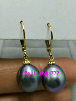 NEW  AAA 10X13mm South Sea black Baroque Pearl Earrings 14K GOLD