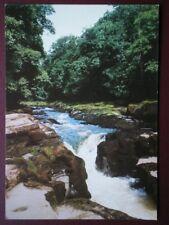 POSTCARD YORKSHIRE WHARFEDALE - THE STRID BOLTON ABBEY