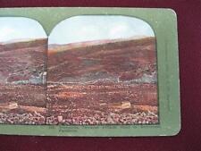 Stereoview T W Ingersoll Holy Land Series Vineyards Road Bethlehem Palestine (O)