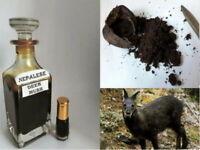 Black Musk Misk (Deer Musk) Kasturi 3ml High Quality Perfume Oil Attar Ittar USA