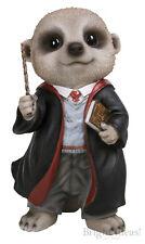 Vivid Arts - PET PALS BABY MEERKAT - Wizard Baby Meerkat