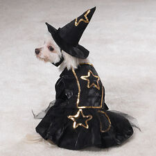 LIL' WITCH Dog Costume Hat Gold Trim Easy On/Off Hook Loop Closures Halloween