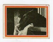 figurina - FURIA PANINI - numero 116