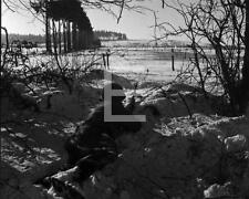 1944 1st Army Battle Of The Bulge Infantry Fighting Position WWII Photo FL36
