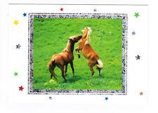 CHEVAL CHEVAUX carte postale n° 9924800030 cadre avec motifs argentés